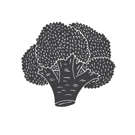 Vector hand drawn black sketch broccoli isolated on white background