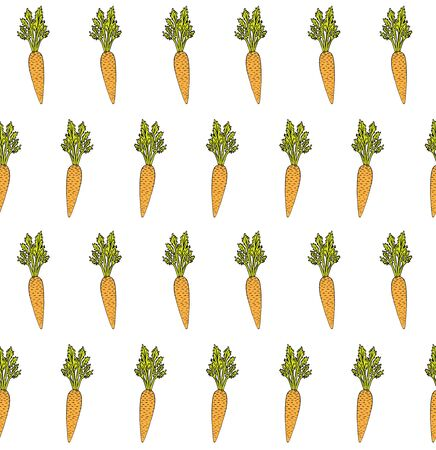 Vector seamless pattern of orange hand drawn sketch carrot isolated on white background