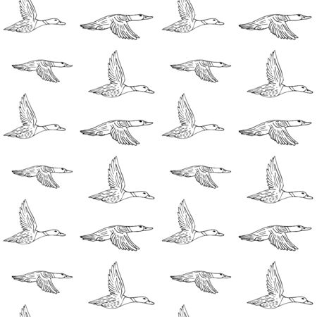 Vector seamless pattern of hand drawn sketch flying duck isolated on white background