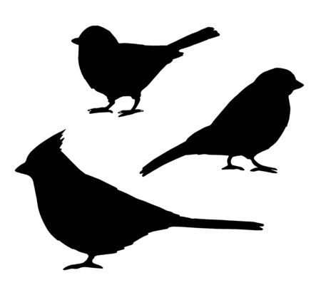 Vector set bundle of black red cardinal, tit and bullfinch birds silhouette isolated on white background