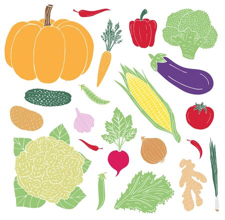 Vector hand drawn sketch doodle set bundle of colored vegetables isolated on white background
