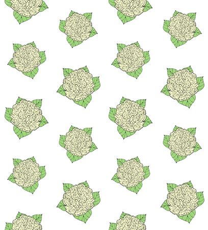Vector seamless pattern of green hand drawn sketch cauliflower isolated on white background