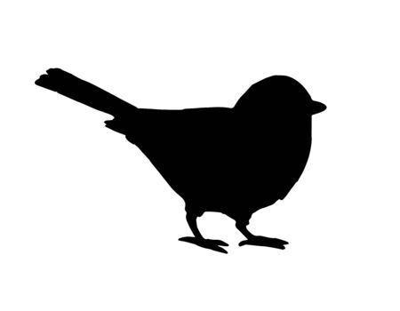 Vector black tit bird silhouette isolated on white background 向量圖像