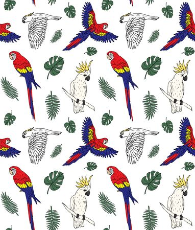 Vector seamless pattern of different hand drawn doodle sketch parrot and palm leaves isolated on white background