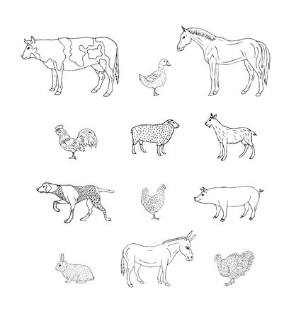 Vector set bundle of hand drawn sketch domestic animals isolated on white background