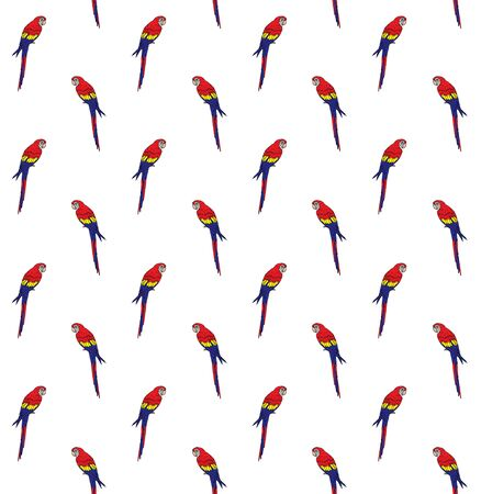 Vector seamless pattern of hand drawn doodle sketch colored macaw parrot isolated on white background Standard-Bild - 134755026