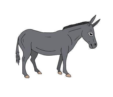 Vector hand drawn doodle gray sketch donkey isolated on white background