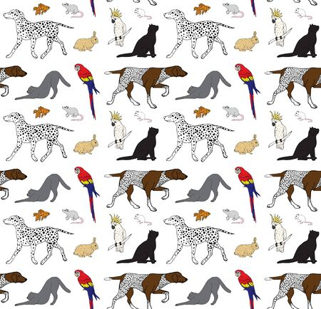 Vector seamless pattern of colored hand drawn doodle sketch different pets isolated on white background Stock Vector - 134824036