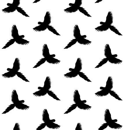 Vector seamless pattern of macaw parrot silhouette isolated on white background