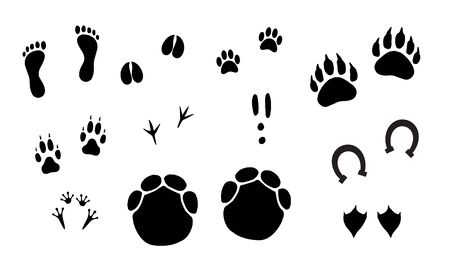 Vector black set bundle of different animals foot print steps isolated on white background Illustration