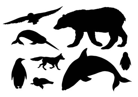 Vector black set bundle of polar north animals silhouette isolated on white background