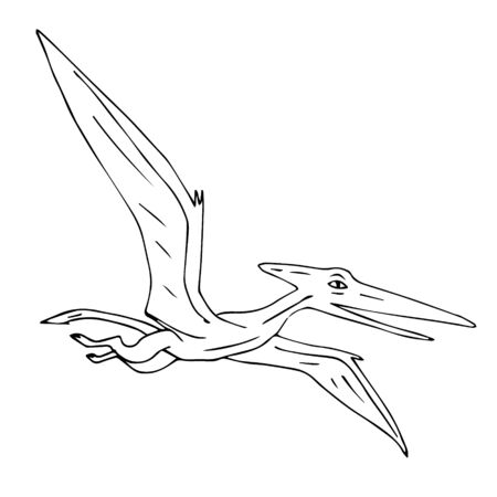Vector black hand drawn outline sketch flying pterodactyl dinosaur isolated on white background