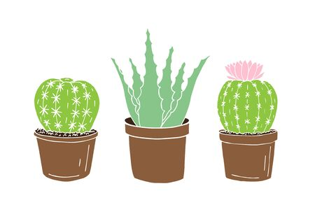Vector hand drawn doodle sketch set of three colored cactus and aloe in pots isolated on white background Фото со стока - 137783696