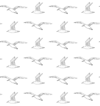 Vector seamless pattern of hand drawn flying sketch sea gull isolated on white background