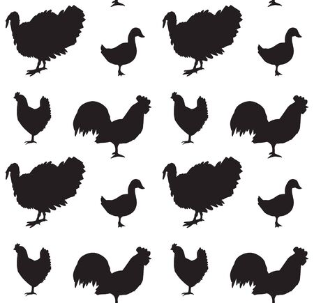 Vector seamless pattern of black domestic birds silhouette isolated on white background