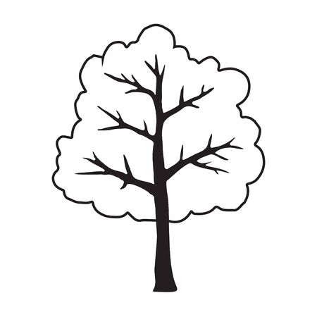 Vector hand drawn doodle sketch black outline tree isolated on white background