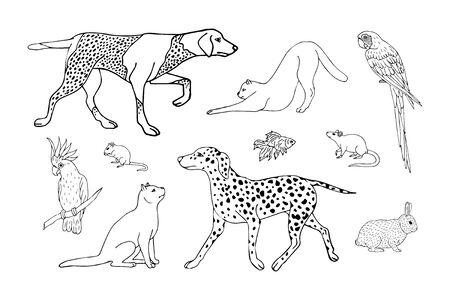 Vector hand drawn sketch doodle set bundle of black outline different pets isolated on white background Ilustração