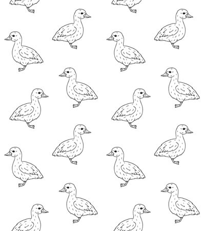 Vector hand drawn doodle sketch baby duckling duck isolated on white background