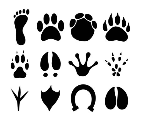 Vector black set bundle of different animals foot print steps isolated on white background Фото со стока - 138089513