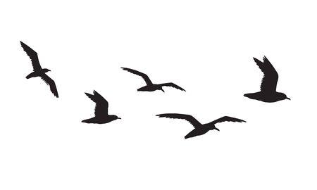 Vector black flock of seagulls flying silhouette isolated on white background Ilustração