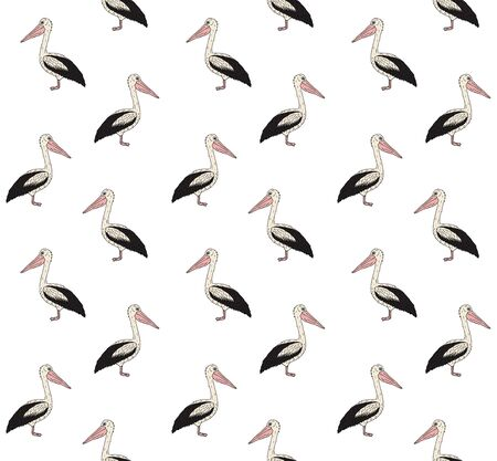 Vector seamless pattern of colored hand drawn doodle sketch pelican isolated on white background