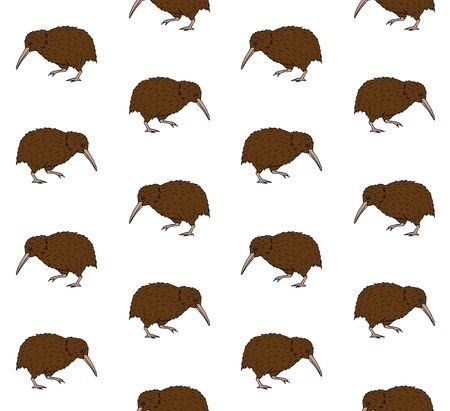 Vector seamless pattern of colored hand drawn doodle sketch kiwi bird isolated on white background