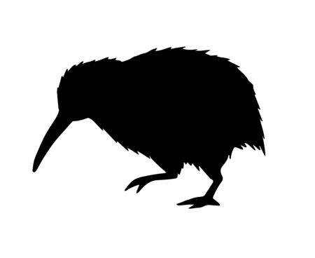 Vector black kiwi bird silhouette isolated on white background Иллюстрация