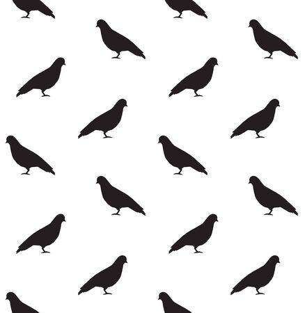 Vector seamless pattern of black pigeon silhouette isolated on white background