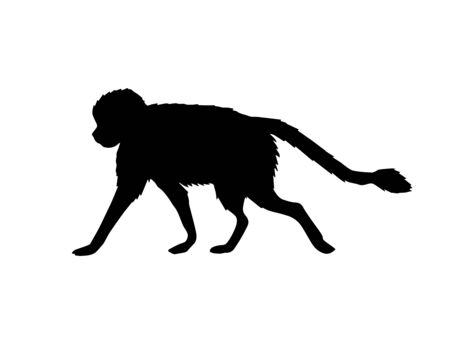 Vector black monkey silhouette isolated on white background Иллюстрация