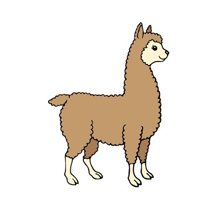 Vector hand drawn doodle sketch colored llama alpaca isolated on white background