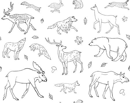 Vector seamless pattern of hand drawn doodle sketch forest animals isolated on white background