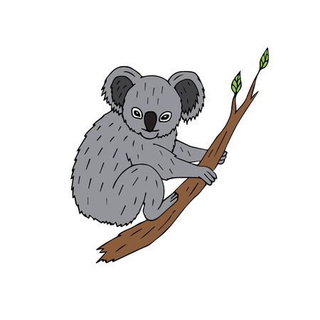 Vector hand drawn doodle sketch colored koala sitting on tree branch isolated on white background Иллюстрация