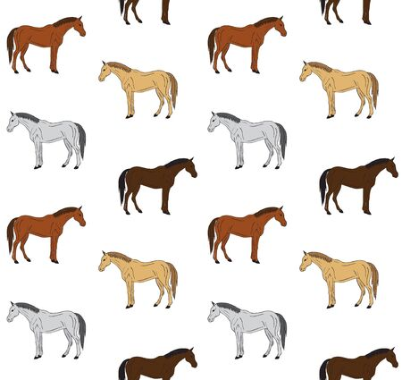 Vector seamless pattern of hand drawn doodle sketch different colored horse isolated on white background Illustration