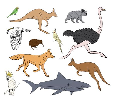 Vector set bundle of hand drawn doodle sketch colored Australian wild animals isolated on white background