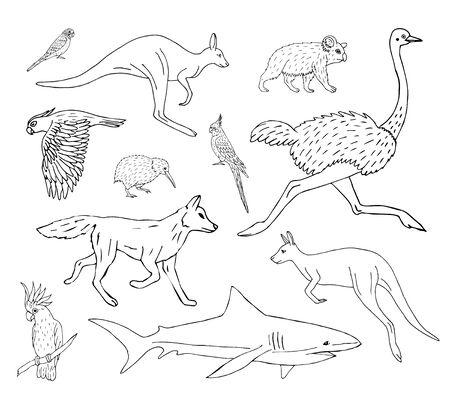 Conjunto de vectores paquete de bosquejo de doodle dibujados a mano animales salvajes australianos aislados sobre fondo blanco Ilustración de vector