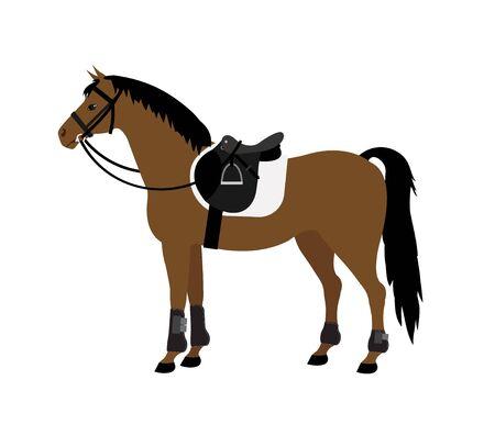 flat cartoon bay horse with saddle and bridle isolated on white background 向量圖像