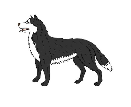 colored hand drawn doodle sketch husky dog isolated on white background Vector Illustration