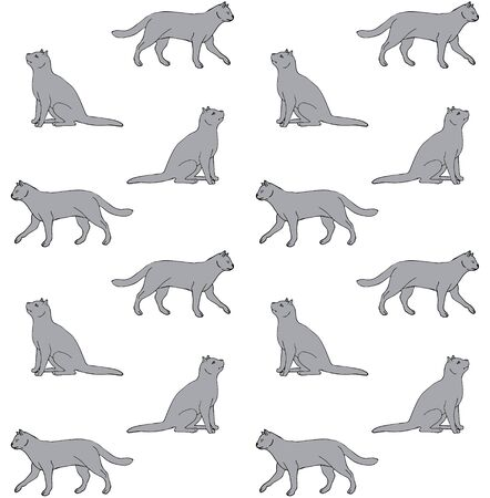 Vector seamless pattern of hand drawn doodle sketch gray British cat isolated on white background