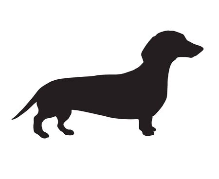 Vector black dachshund dog silhouette isolated on white background