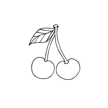Vector hand drawn doodle sketch cherry berries isolated on white background