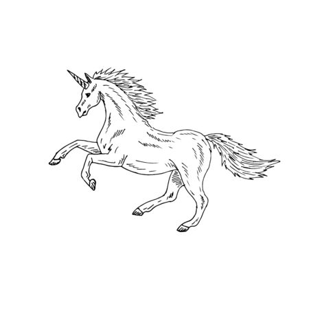 Vector hand drawn doodle sketch running unicorn isolated on white background Illustration