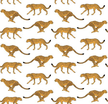 Vector seamless pattern of hand drawn doodle sketch leopard cheetah isolated on white background