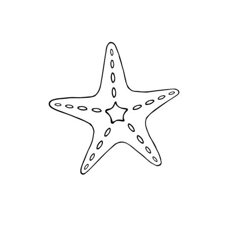 Vector coral color hand drawn doodle sketch sea star starfish isolated on white background  Vettoriali