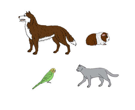 Vector set of hand drawn doodle sketch pets animals isolated on white background