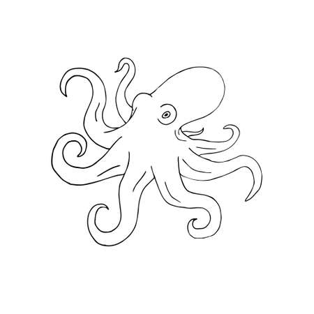 Vector  doodle  octopus isolated on white background