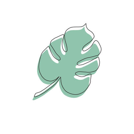 Vector hand drawn doodle sketch green monstera palm leaf isolated on white background