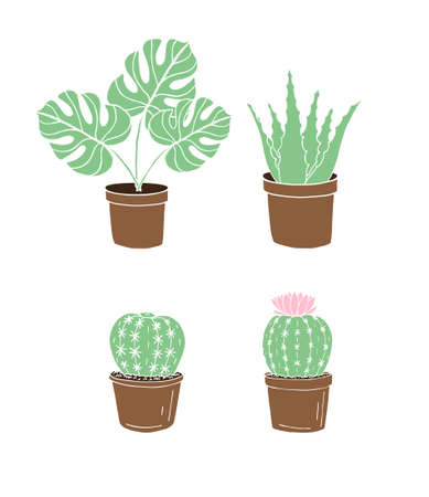 Vector set bundle of colored hand drawn doodle sketch monstera plant and cactus in pots isolated on white background