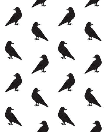 Vector seamless pattern of black hand drawn doodle sketch raven isolated on white background 矢量图像