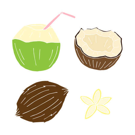 Vector set bundle of hand drawn doodle sketch colored coconut isolated on white background