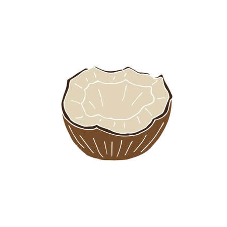 Vector colored hand drawn doodle sketch half cut coconut isolated on white background